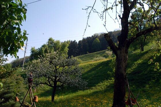2011-04-21 - DM-LAN - 020