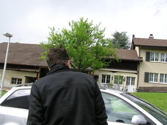 2006-05-20 - BF-Treff - 002