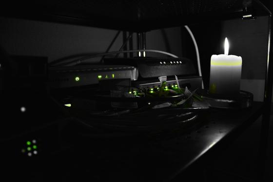 Das Leuchten der Datenpakete