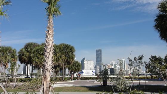 2011-01-30 - Miamitrip - 016