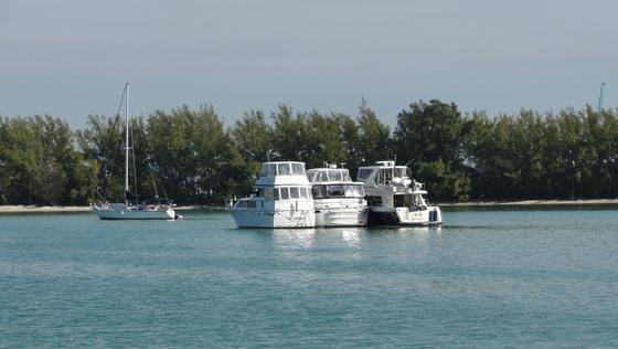 2011-01-30 - Miamitrip - 018
