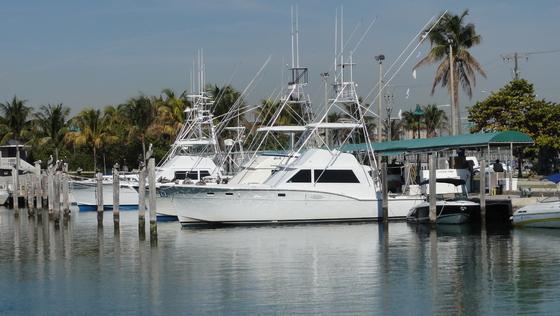 2011-01-30 - Miamitrip - 021