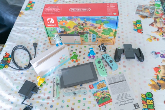 Nintendo Switch Animal Crossing New Horizons Edition Unboxing - 004