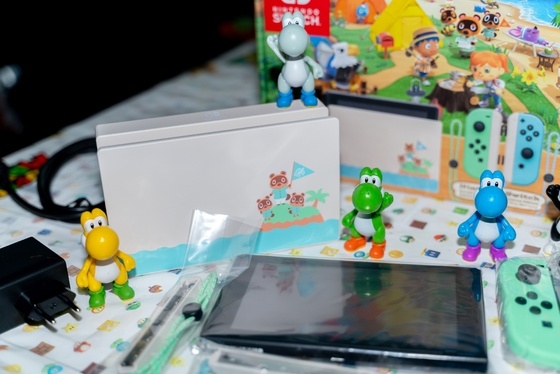 Nintendo Switch Animal Crossing New Horizons Edition Unboxing - 006