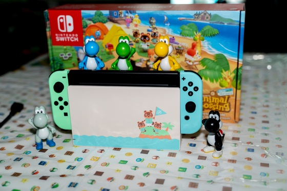 Nintendo Switch Animal Crossing New Horizons Edition Unboxing - 009