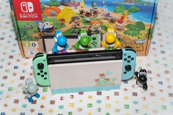 Nintendo Switch Animal Crossing New Horizons Edition Unboxing - 010