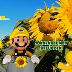 Mario & Yoshi Wallpaper August 2021 - 024